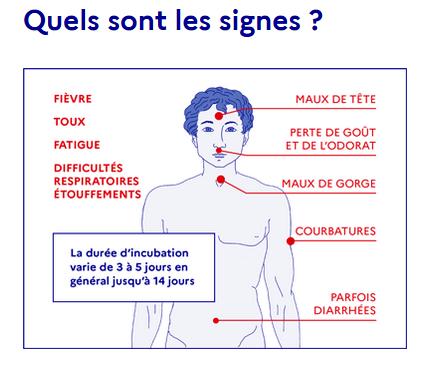 Schéma signes de la maladie